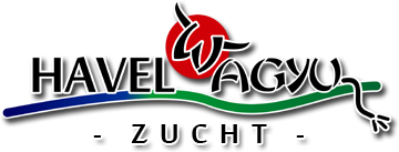 Havel-Wagyu Zucht